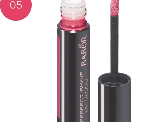 Perfect Lip Gloss5